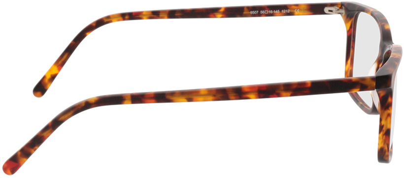 Picture of glasses model Reus-mate Havanna in angle 90