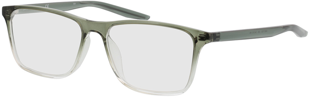 Picture of glasses model Nike NIKE 7125 300 54-15 in angle 330