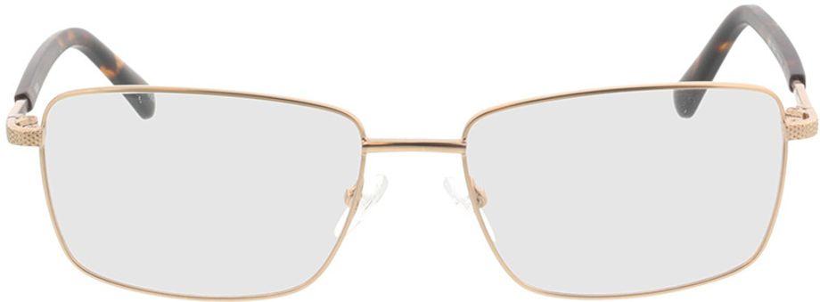Picture of glasses model Molpa-matt gold in angle 0