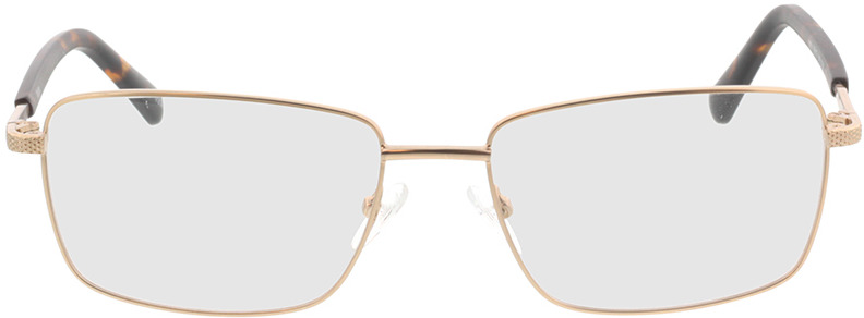 Picture of glasses model Molpa-mat or in angle 0