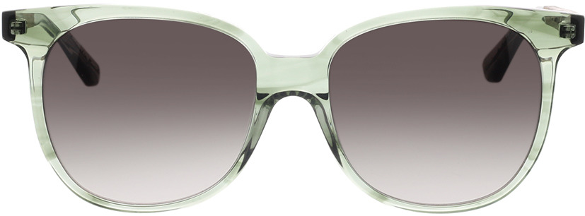Picture of glasses model Wood Fellas Sunglasses Moyland walnut/smoked green 55-17 in angle 0