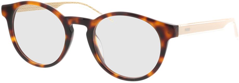Picture of glasses model Hugo HG 1045 C1H 49-21 in angle 330