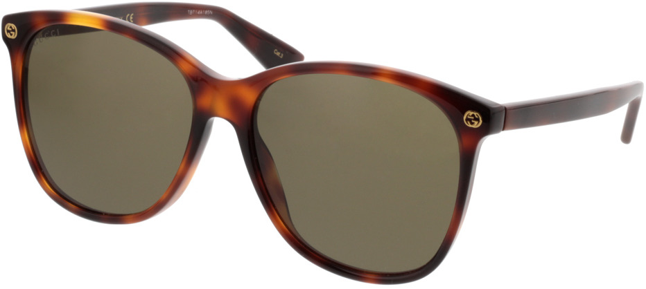 Picture of glasses model Gucci GG0024S-002 58-16 in angle 330