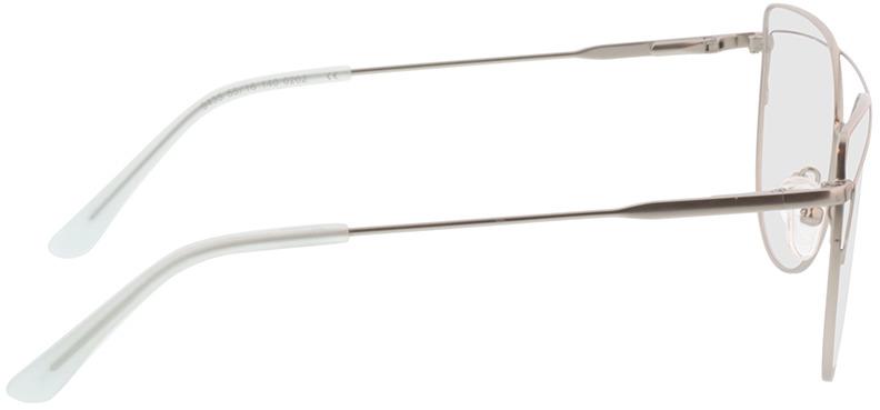 Picture of glasses model Calida-matt silber in angle 90