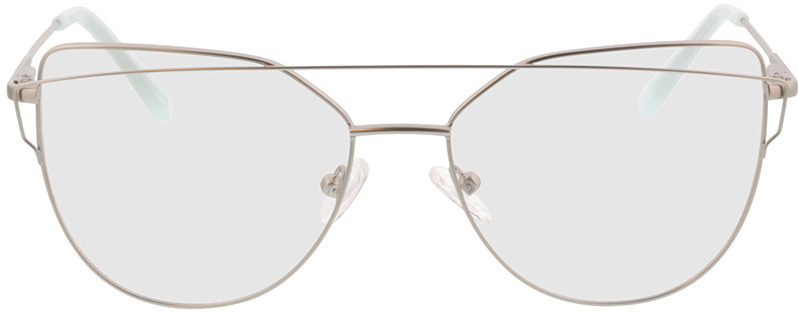 Picture of glasses model Calida-matt silber in angle 0