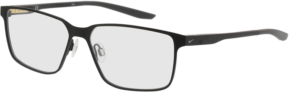 Picture of glasses model Nike NIKE 8048 003 55-14 in angle 330