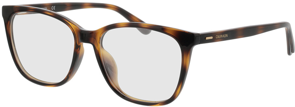 Picture of glasses model Calvin Klein CK20525 235 53-16 in angle 330