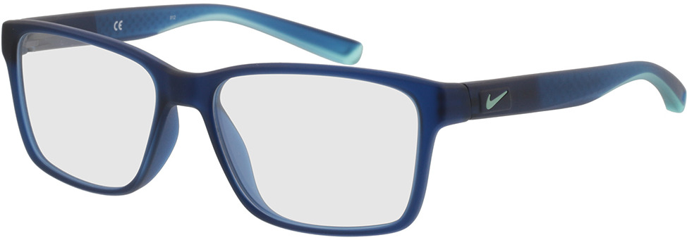 Picture of glasses model Nike 7091 411 54 15 in angle 330