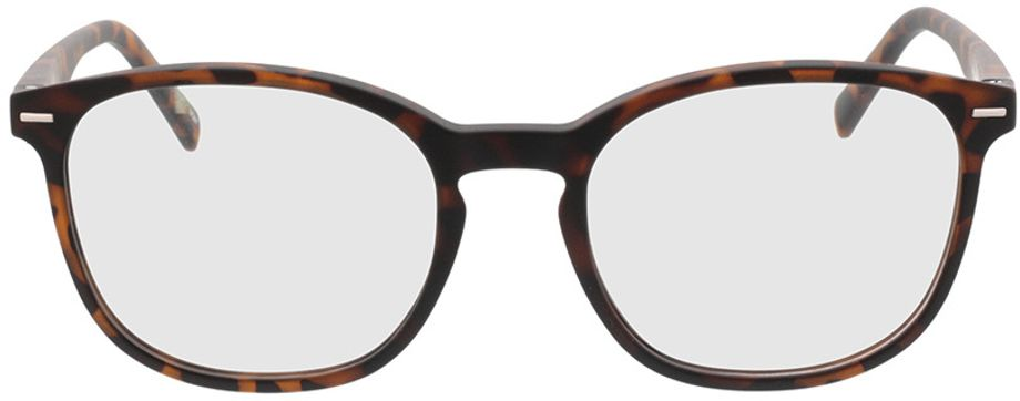 Picture of glasses model Olea-braun-meliert in angle 0