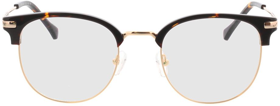 Picture of glasses model Wimbledon-gold/braun in angle 0