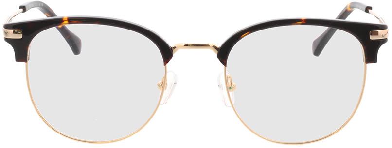 Picture of glasses model Wimbledon dourado/castanho in angle 0