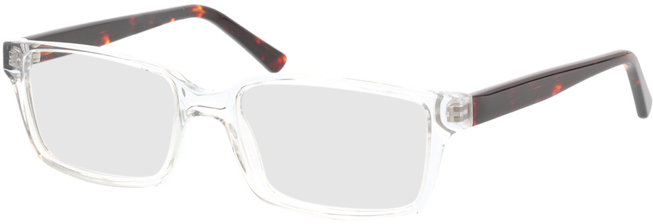 Picture of glasses model Nixon-transparent in angle 330