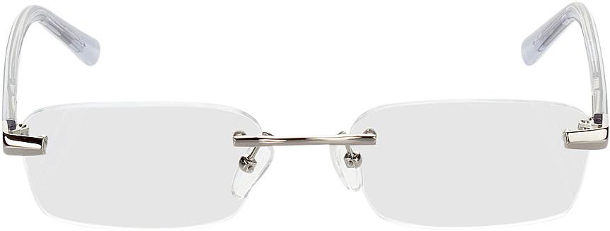 Picture of glasses model Bristol zilver/zwart in angle 0