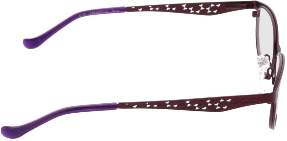Picture of glasses model Delhi-lila in angle 90