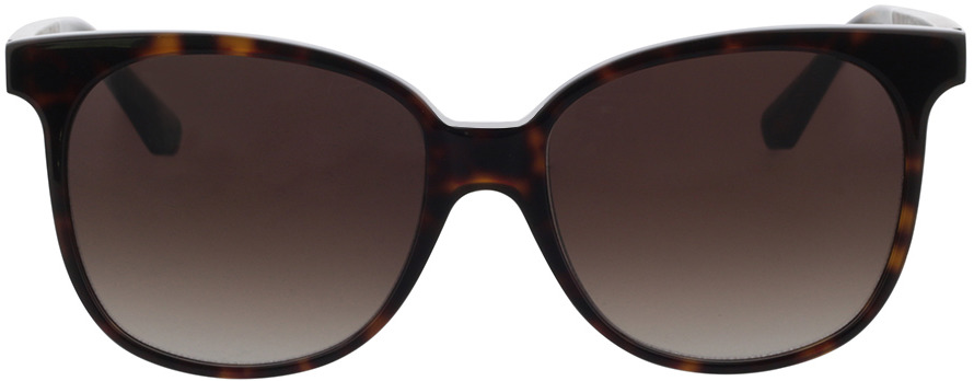 Picture of glasses model Wood Fellas Sunglasses Aspect black oak/havana 55-17 in angle 0
