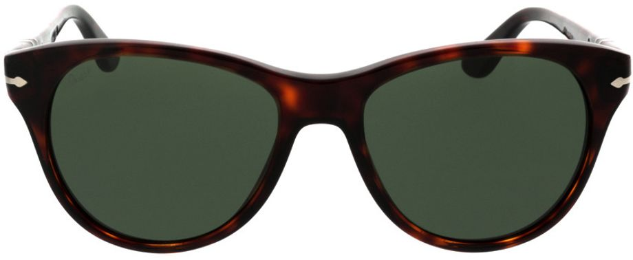 Picture of glasses model Persol PO3134S 24/31 54-17 in angle 0