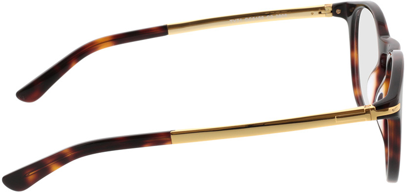 Picture of glasses model Tokio brown/mottled/gold in angle 90