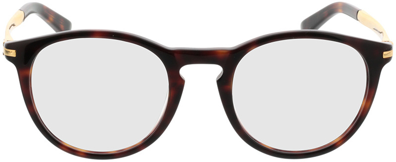 Picture of glasses model Tokio brown/mottled/gold in angle 0