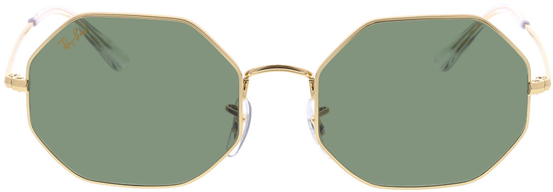 Picture of glasses model Ray-Ban RB1972 919631 54-19 in angle 0