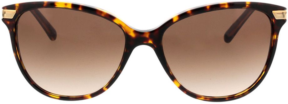 Picture of glasses model Burberry BE4216 300213 57-16 in angle 0