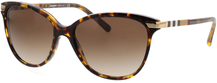 Picture of glasses model Burberry BE4216 300213 57-16 in angle 330