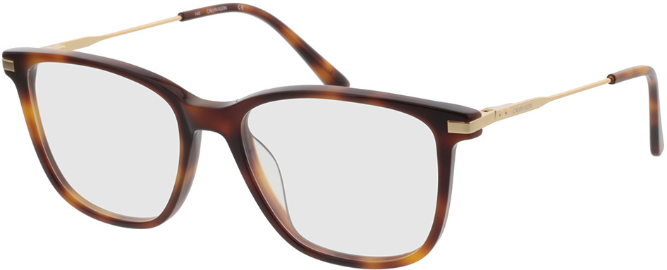 Picture of glasses model Calvin Klein CK19711 240 53-17 in angle 330