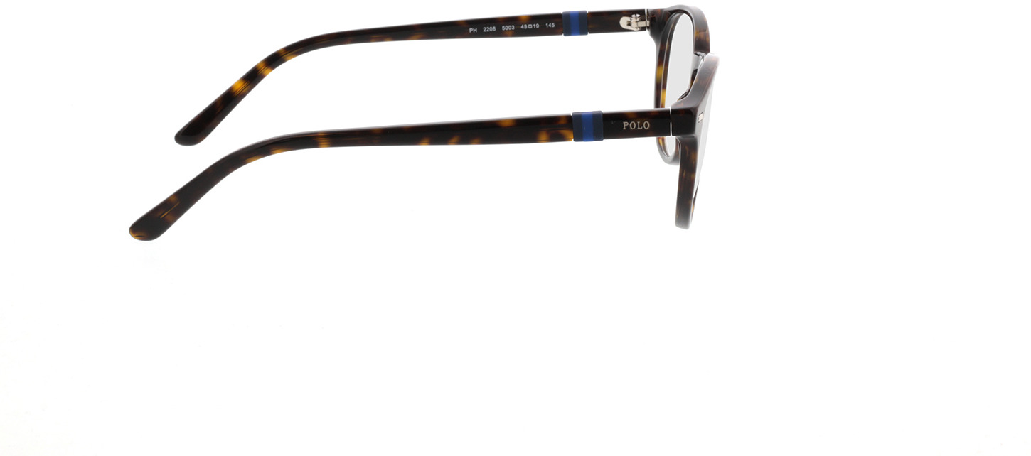 Picture of glasses model Polo Ralph Lauren PH2208 5003 49-19 in angle 90