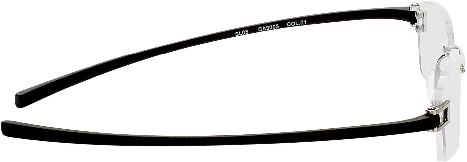 Picture of glasses model Wellington zilver/zwart in angle 90