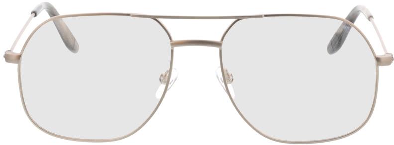 Picture of glasses model Remo-matt silber in angle 0