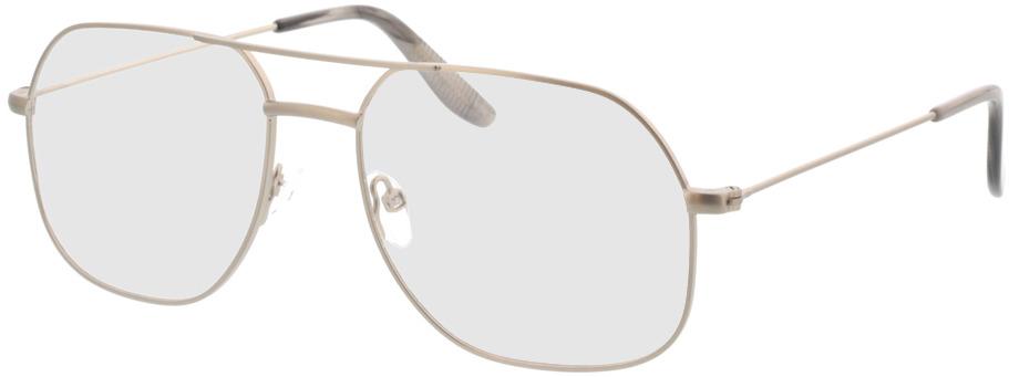Picture of glasses model Remo-matt silber in angle 330