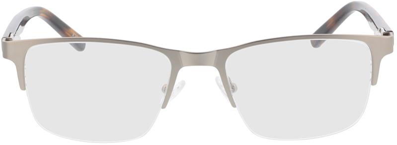 Picture of glasses model Alamo-matt silber/braun-meliert in angle 0