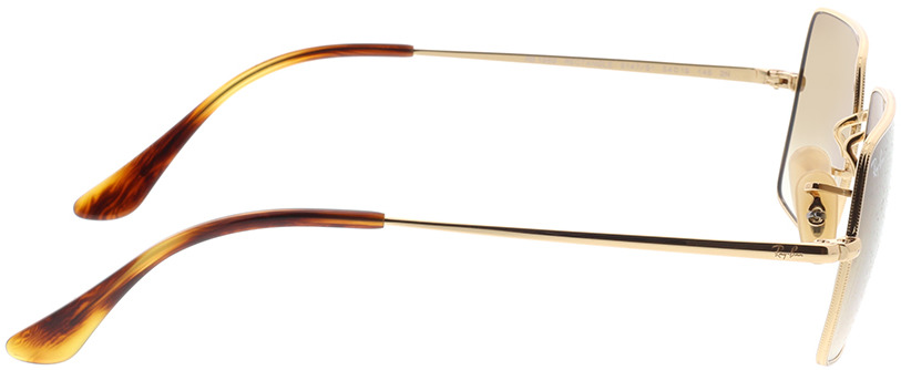 Picture of glasses model Ray-Ban RB1969 914751 54-19 in angle 90