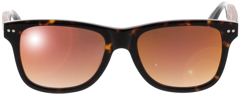 Picture of glasses model Wood Fellas Sunglasses Schellenberg walnut/havana 53-18 in angle 0