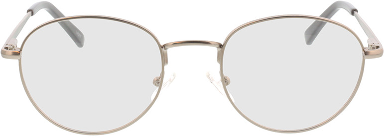 Picture of glasses model Liveo-silber in angle 0