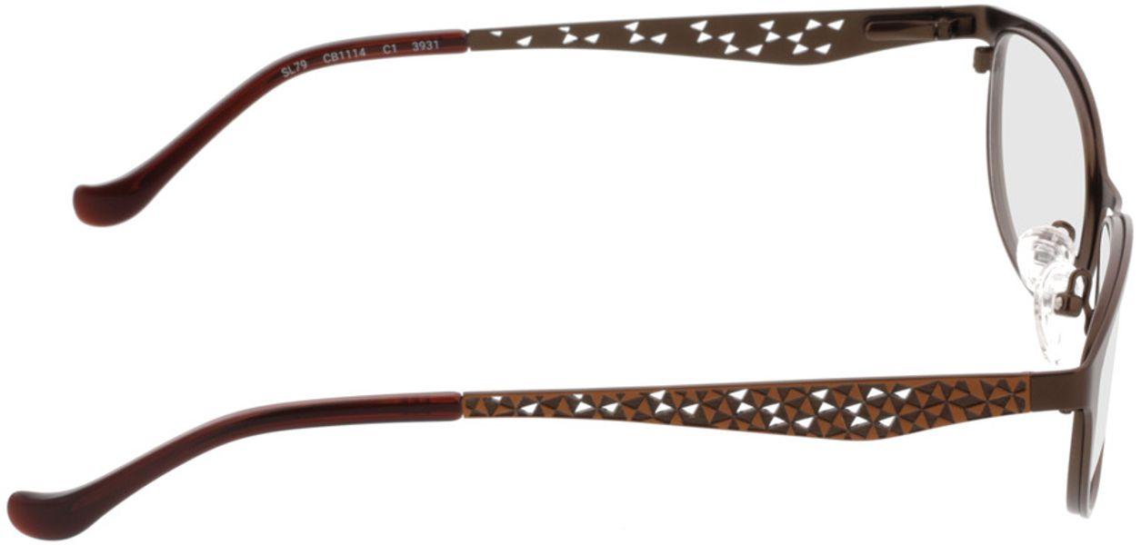 Picture of glasses model Delhi-brown in angle 90