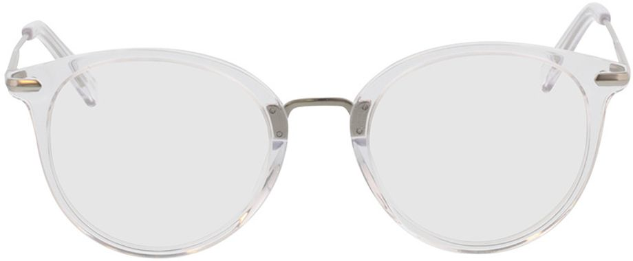 Picture of glasses model Dolina-transparent/matt silber in angle 0