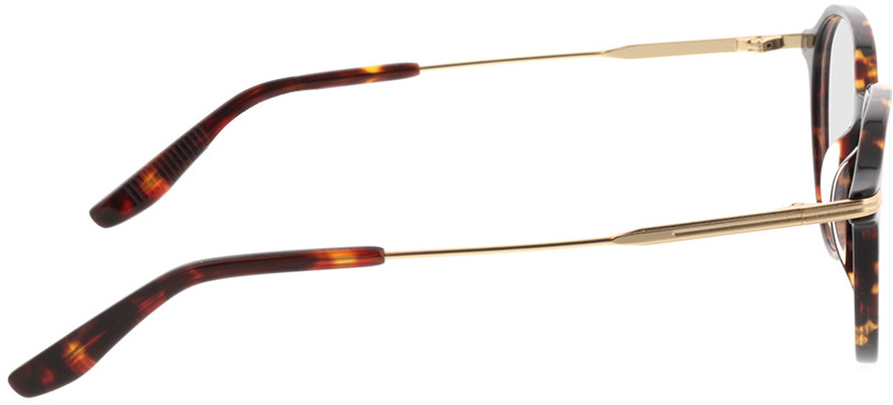 Picture of glasses model Piero-braun-meliert/gold in angle 90