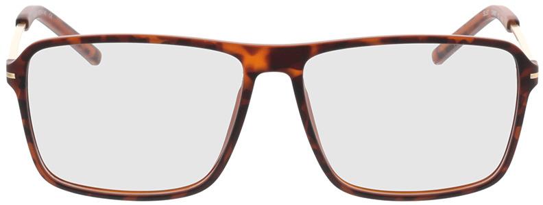 Picture of glasses model Watts castanho/mosqueado/dourado in angle 0