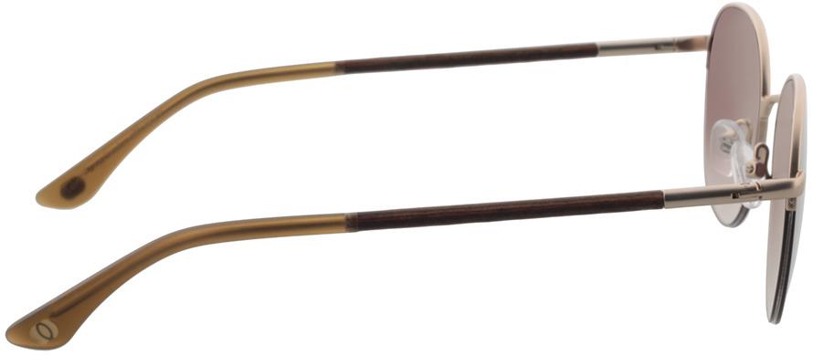 Picture of glasses model Wood Fellas Sunglasses Horizon macassar/gold 52-20 in angle 90