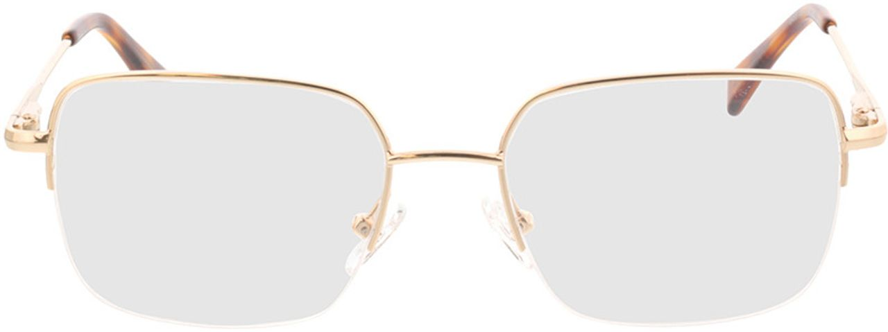 Picture of glasses model Texel-gold in angle 0