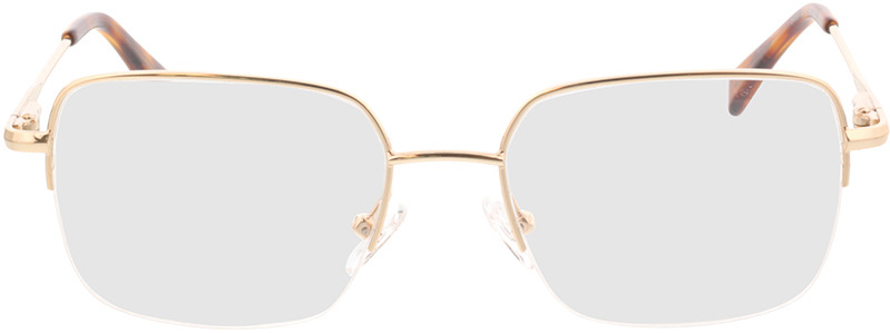 Picture of glasses model Texel Goud in angle 0