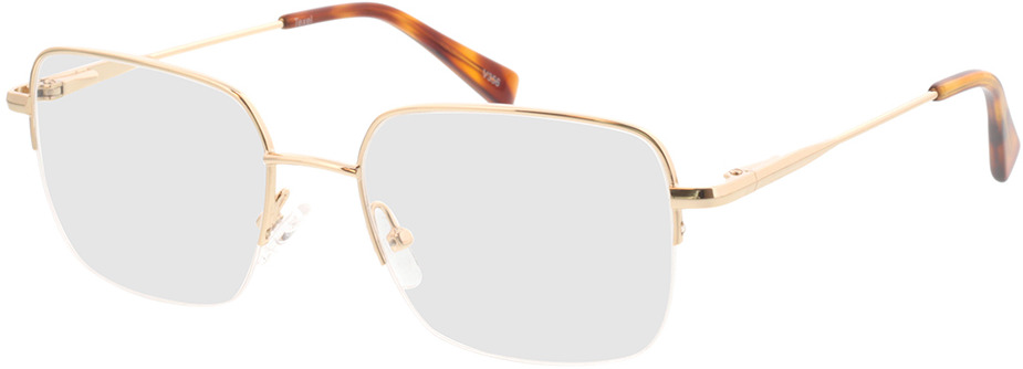 Picture of glasses model Texel Goud in angle 330