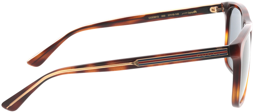 Picture of glasses model Gucci GG0381S-009 57-18 in angle 90