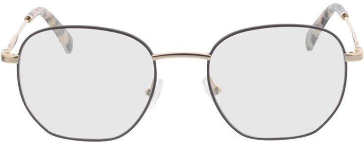 Picture of glasses model Calvin Klein Jeans CKJ20101 272 50-19 in angle 0