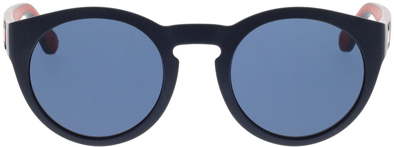 Picture of glasses model Tommy Hilfiger TH 1555/S 8RU 48-22 in angle 0