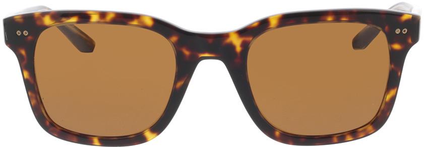 Picture of glasses model Giorgio Armani AR8138 502633 51 in angle 0