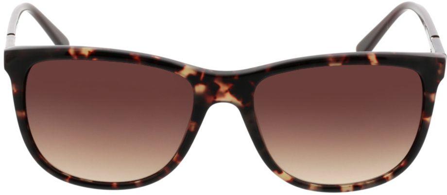 Picture of glasses model Comma77037 60 braun/havanna 55-17 in angle 0