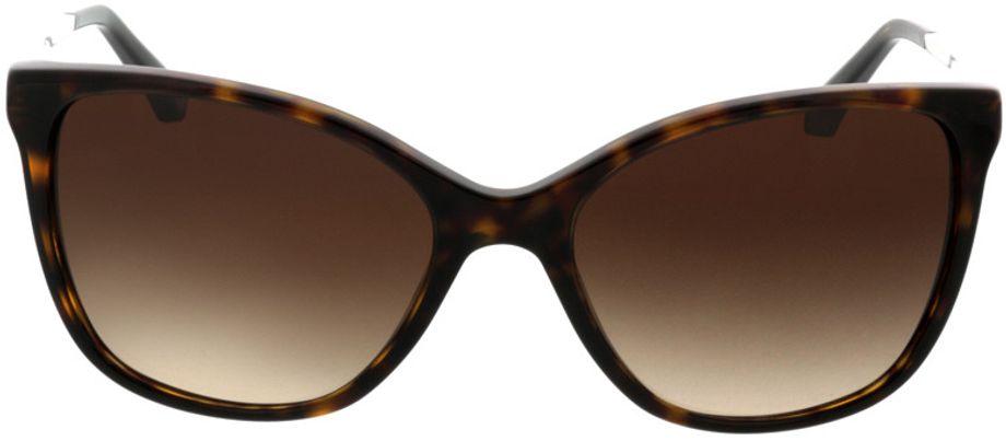 Picture of glasses model Emporio Armani EA4025 502613 55-17 in angle 0