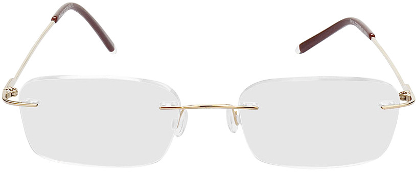 Picture of glasses model Salinas-gold in angle 0