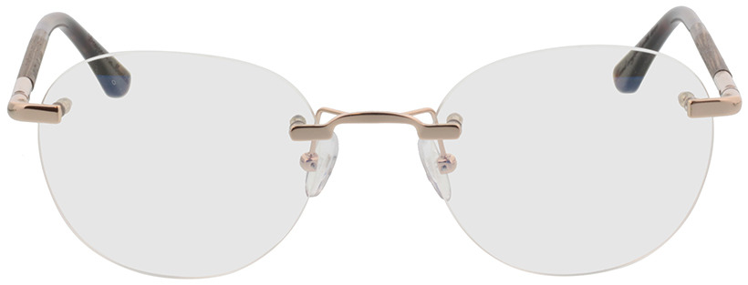 Picture of glasses model Wood Fellas Optical Ammil curled/Glanzend goud 52-20 in angle 0